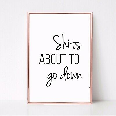S@ITS ABOUT TO GO DOWN PRINT PICTURE FUNNY TOILET BATHROOM QUOTE unframed 22