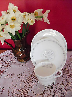 Lovely Vintage Wedgwood bone china  trio  cup, saucer & tea plate pattern UH3976
