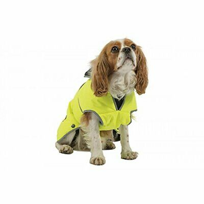 Ancol Muddy Paws Storm guard Dog Coat, X-Large, Hi-Vis Yellow