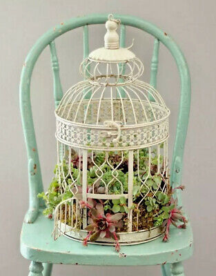 Antique White French Style Steel Bird Cage Decorative Indoor/Outdoor Metal
