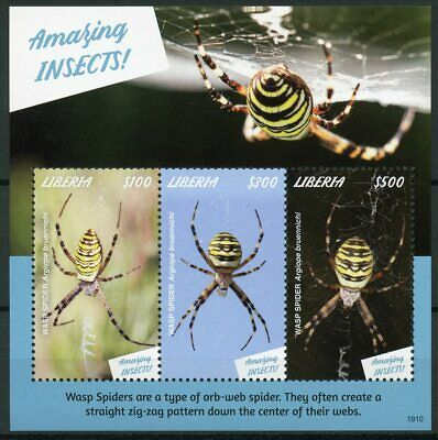 Liberia 2019 MNH Amazing Insects Wasp Spider 3v M/S Spiders Stamps