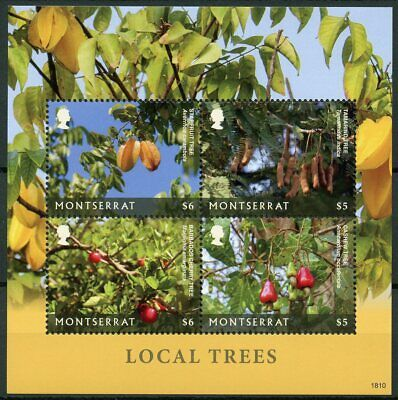 Montserrat 2019 MNH Local Trees Starfruit Tamarind Tree 4v M/S Nature Stamps