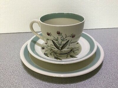 Alfred Meakin Hedgerow. Trio. Cup, Saucer & Plate.
