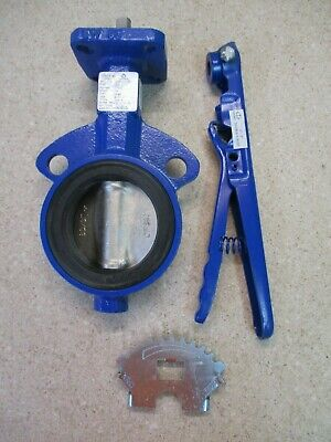 Deltech Delval 3'' Iron Butterfly Valve #618213G New