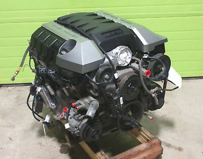 CHEVY 4 8 5 3 or 6 0 LSx Complete Stand Alone EFI Engine Wire