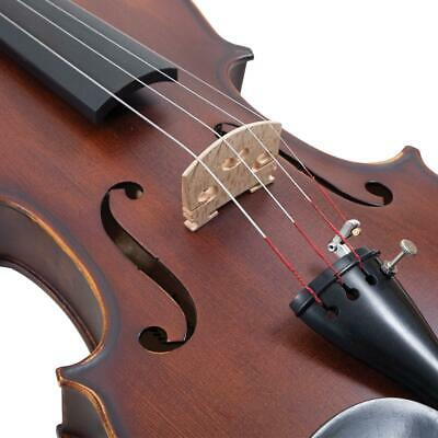 Neuf Palatino 4/4 Taille Réelle Anziano Violon Équipement VN-950