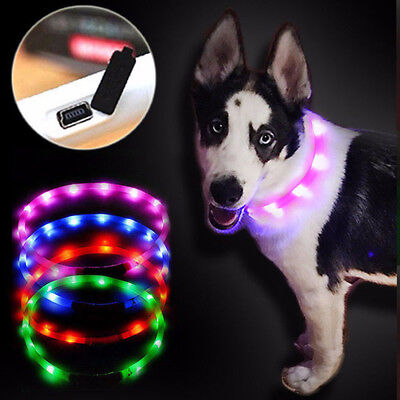 USB Rechargeable Pet Collar Flashing LED Light Band Luminous Dog Safety BeltChic