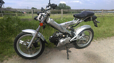 Sachs Madass ..TOP !!!!!!!