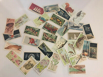 29 Brooke Bond Tea Cards c. 1971 -1990 (G) to (VG+) (Various Subjects) LOT E