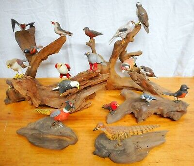 Group of Antique Wood Bird Carvings on Natural Wood Bases