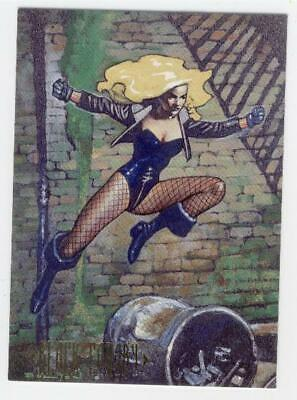 1994 Skybox Master Series  Black Canary  # 87