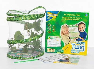 Living Twig by Insect Lore - Authorise Retailer- Stick Insect Kit