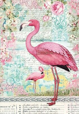 Stamperia Rice Paper PINK FLAMINGO A4 Sheet DFSA4273 Decoupage/Mixed Media