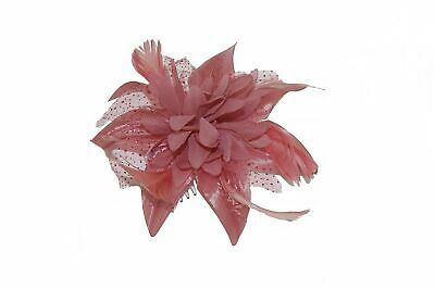 Copper Dusky Orchid Pink Lily & Feather Fascinator on Comb. Ladies, Girls UK