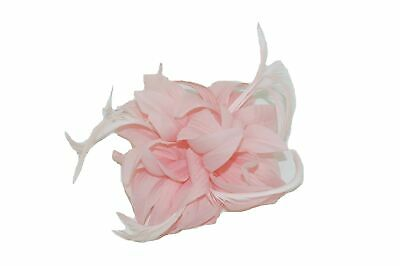 GIZZY® Ladies Pale Pink Petals and Feathers Fascinator on Hair Clip & Brooch ...