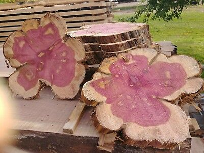 "4 Pc10""to12"" Red Cedar Slices Wood Disk Rustic Wedding Centerpiece Coaster SALE"