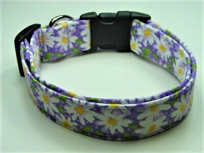 Charming Lilac Purple with White Daisy Daisies Dog Collar
