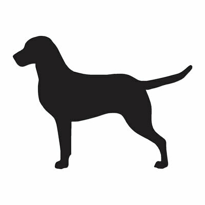 Chesapeake Bay Retriever Dog - Vinyl Decal - Multiple Color & Sizes - ebn1933