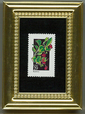 Bearberry Plant - A Collectible Glass Framed  Postage Masterpiece