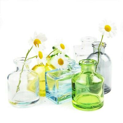 225 & CHIVE - LOFT Small Glass Flower Vases Decorative Rustic Floral Vases for Ho...