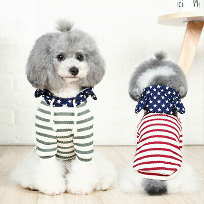Pet Dog Clothes Teddy Two Feet Clothing Sweater Spring and Autumn Cat T-shirt