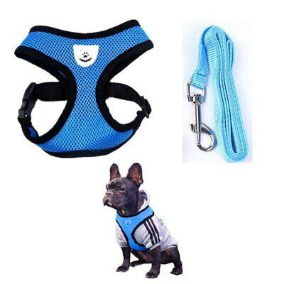 Adjustable Soft and Comfortable Small Dog Vest Harness Fashion Nylon Mesh