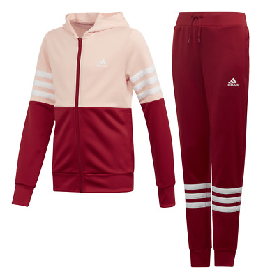 Adidas Girls Hooded Track Suit
