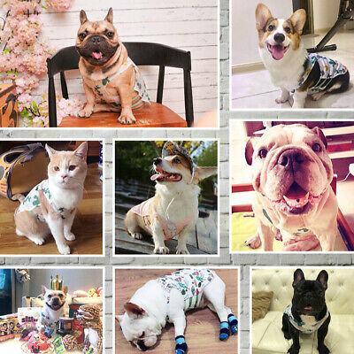 Summer Cute Fruit Pattern Thin Small Pet Puppy Dog Cat Clothes Vest Costumes