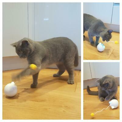 Automatic Smart Rotating Cat Kitten Chase Toy - Wand, Teaser, Ball, Play