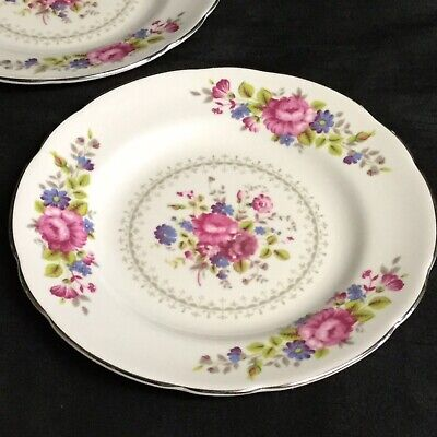 🌸 A Stunning Pair Of Vintage 'Regency' Bone China Tea Plates With Silver Trim
