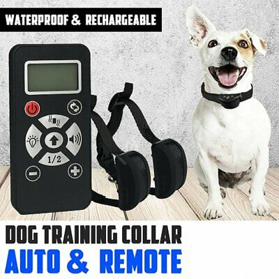 Electric Remote Dog Training Collar Anti Bark 800m Range NoShock Auto mode AU