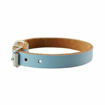 Pure Leather Pet Collar Animal Neck Chain Cats Dogs Comfortable CollarBlueXS XG