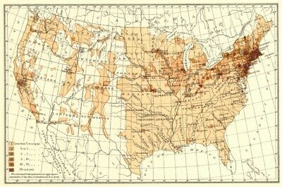 USA. Density of Natives of the Ireland.  1900 old antique map plan chart