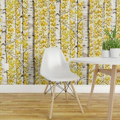Wallpaper Roll or Sample: Birch Trees Forest Woods Yellow Fall Autumn Sfaut15
