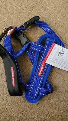 Ezydog Chest Plate Harness SMALL - BLUE  - With free car restraint