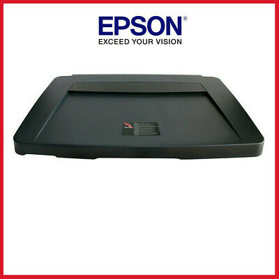epson expression 10000xl drivers windows 7