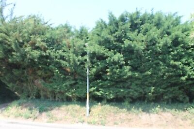 Large Plot of rural Land with Planning Permission - 4 Bed Detached House