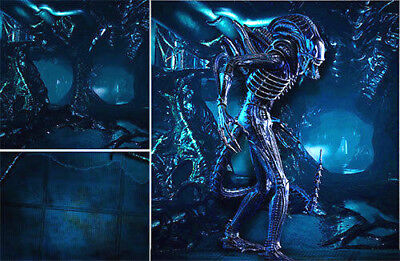Poster Backdrop Ships Rolled~Aliens~Lv-426 For 1/6 Hot Toys Space Marines Mms366