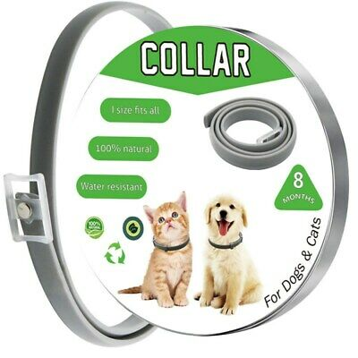 Anti Insect Flea and Tick Collar 8 Month Protection For Pet Dog Cat Adjustable