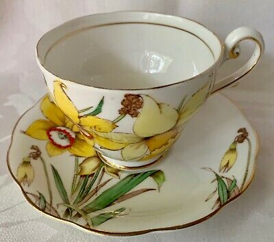 Beautiful Golden Gleam Royal Standard England Daffodils Cup & Saucer