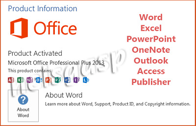 MS Office Professinal Plus Pro Plus 2013 with DVD for 1 PC