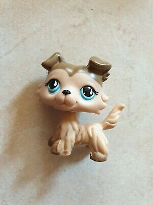 figurine petshop chien colley 58 bis