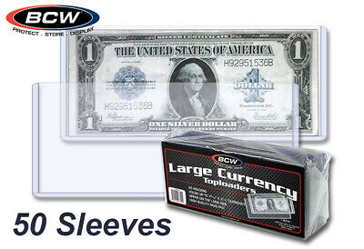 50 Rigid Large Dollar Currency Sleeve Topload Bill Holders BCW Safe Long Term