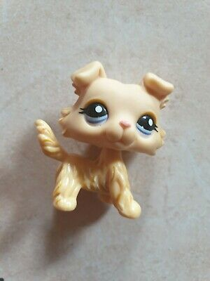 figurine petshop chien colley 1194