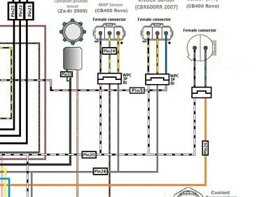 FORD F-150 2005 05 Complete Color Wiring Diagram Schematic ... on