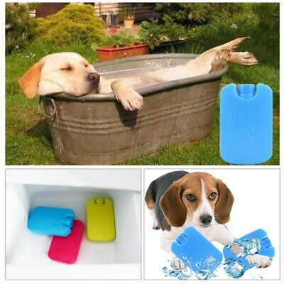 Pet Summer Cooling Mats Blanket Ice Dog Bed Portable Camping Sleeping Mats New