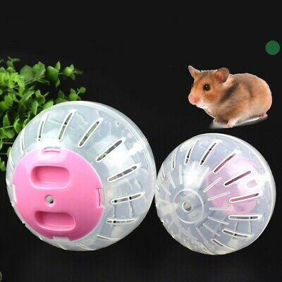 Hamster Guinea Pig Exercise Running Ball Play Gyro Toys Pets Training Funny New