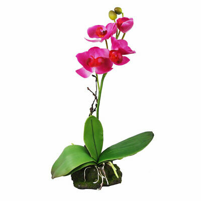 Lucky Reptile Upright Orchid Pink Standing Decor Reptile Vivarium Flower