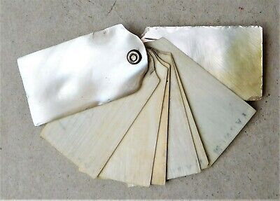 NO RESERVE c1890 Victorian Mother of Pearl Aide Memoire Dance Card MOP Vintage