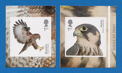 GB 2019 Birds of Prey.  Pair of S/A stamps from booklet.  MNH